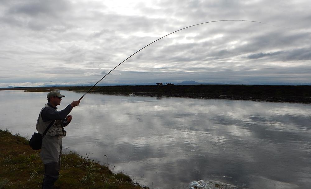 West Ranga river - Salmon fishing