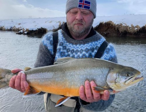 The 2019 fishing season has started here in Iceland